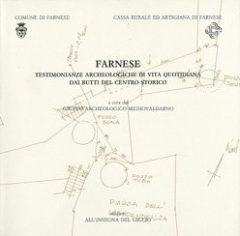 Farnese. Testimonianze archeologiche di vita quotidiana dai butti del centro storico