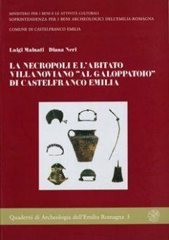 La necropoli e l'abitato villanoviano